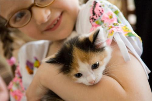 Bambini con gatti: migliori amici