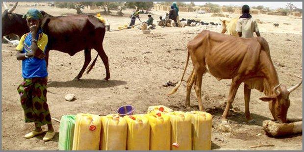 Emergenza in Sahel
