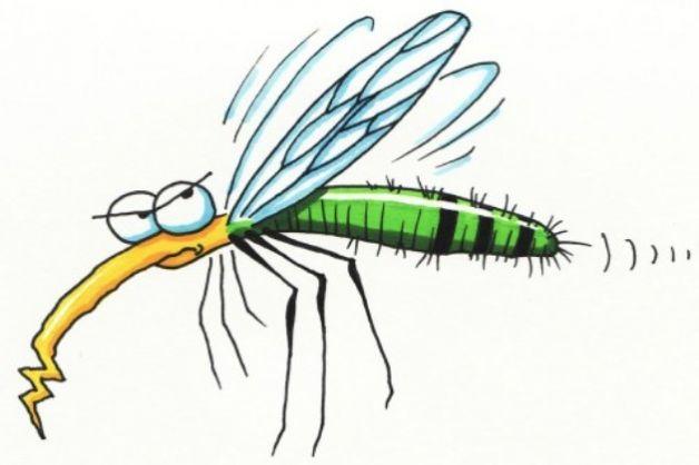 Proteggere i bambini dalle zanzare