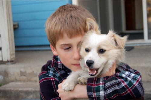 Adottare a distanza i bambini della Russia