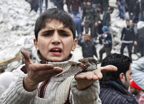 salvare i bambini della Siria